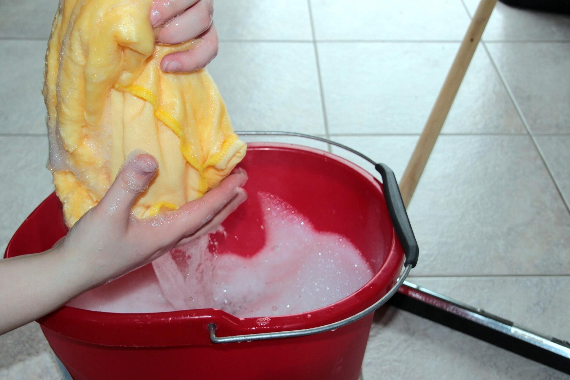 Novos Direitos Para os Trabalhadores Domésticos